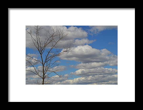 Clouds Framed Print featuring the photograph Cloudy Sky by Jessica Cruz