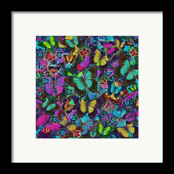 Alixandra Mullins Framed Print featuring the photograph Cloured Butterfly Explosion by Alixandra Mullins