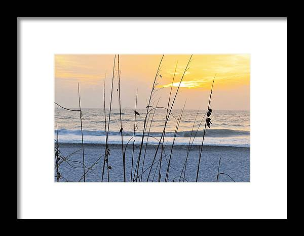 Beach Framed Print featuring the photograph Coastal Sunset by Mark Mitchell