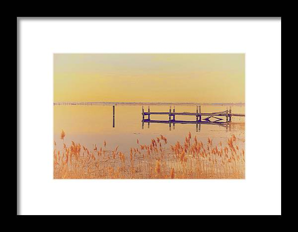 Winter Framed Print featuring the photograph Coastal Winter by Karol Livote