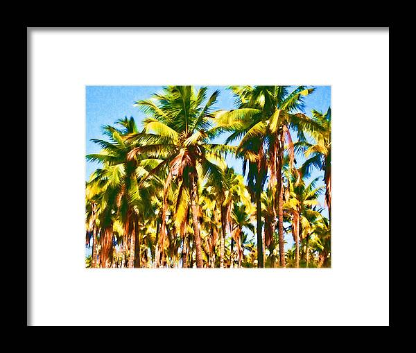 Coconut Trees Framed Print featuring the photograph Coconut Trees by Joe Carini