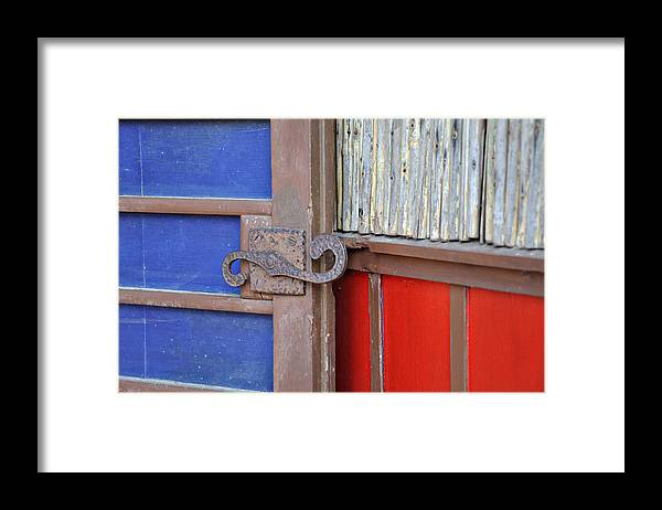 Color Framed Print featuring the photograph Color and Texture by Todd Hartzo