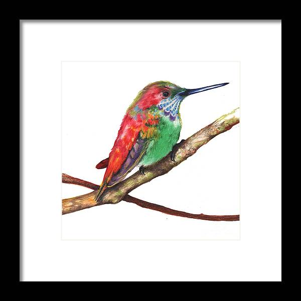 Framed Print featuring the drawing Color Bird 9 by Anthony Burks Sr
