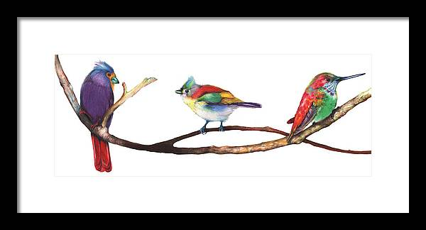 Framed Print featuring the mixed media Color Birds Study 3 by Anthony Burks Sr