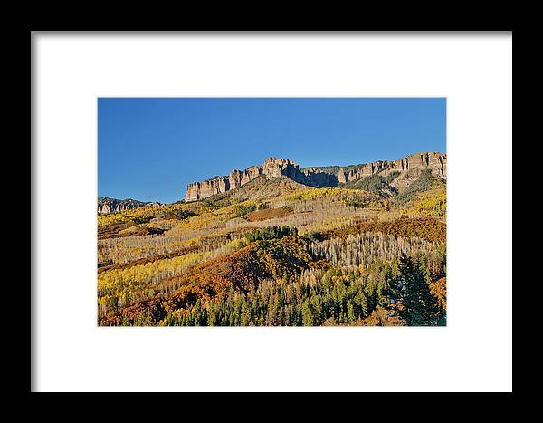 Aspen Framed Print featuring the photograph Colorado, Autumn, Just East Of Ridgway by Darrell Gulin