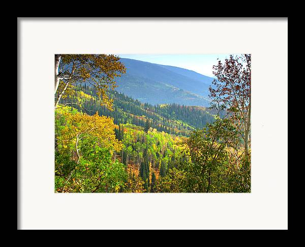 Colorful Colorado Turning Aspens Mountain Landscape Scene Framed Print featuring the photograph Colorful Colorado by Brian Harig