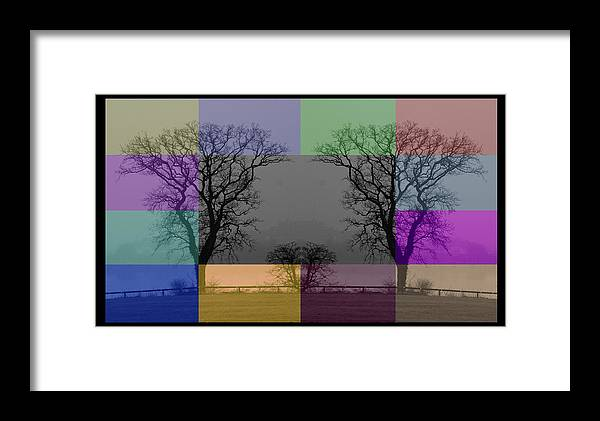 Black Framed Print featuring the photograph Colour Tile by Rene Larsen