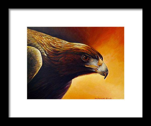 Falconry Framed Print featuring the painting Concentration by Anna Franceova