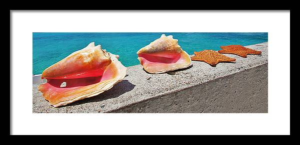 Water Photographs Framed Print featuring the photograph Concha Line by DM Photography- Dan Mongosa