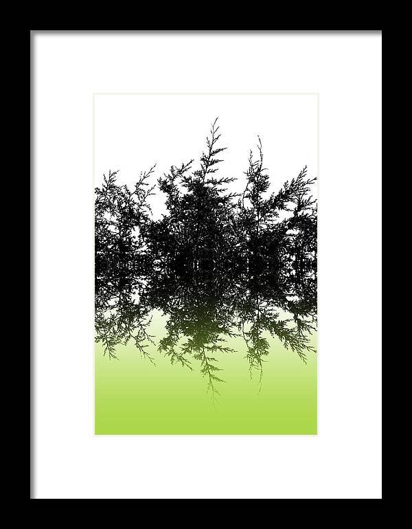 Conifer Framed Print featuring the digital art Conifer Lime by Sharon Lisa Clarke