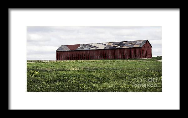 Barn Framed Print featuring the photograph Connecticut Tobacco Barn by Phil Cardamone