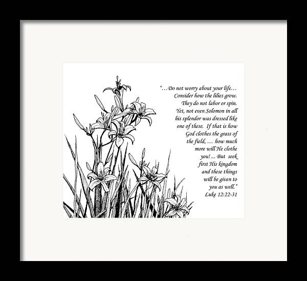 Lilies Framed Print featuring the drawing Consider How The Lilies Grow by Janet King