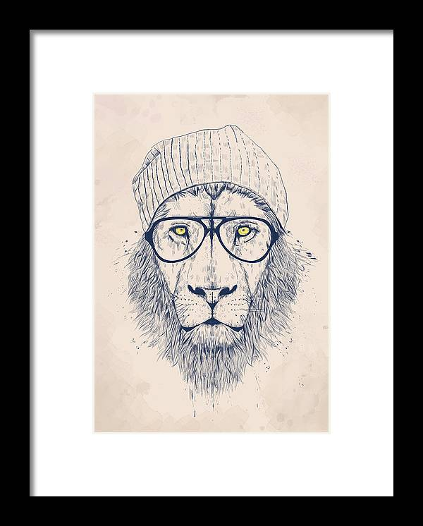 Lion Framed Print featuring the drawing Cool lion by Balazs Solti