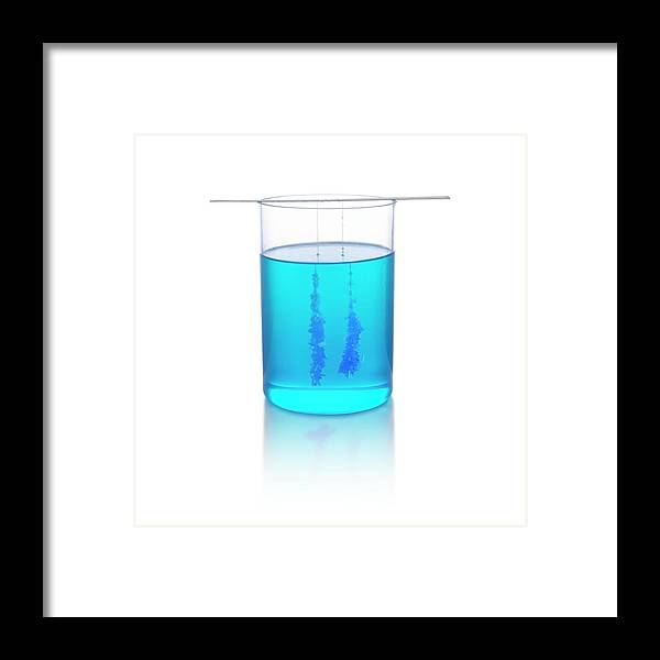 Copper Sulphate Crystals Growing Framed Print