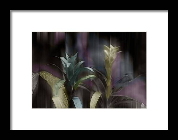 Corn Framed Print featuring the photograph Cornflower Apparition by Wayne King