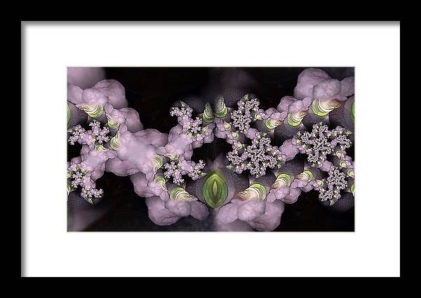 Collage Framed Print featuring the digital art Cotten Tail by Ron Bissett