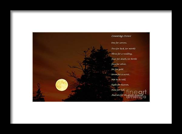 Counting Crows Framed Print featuring the photograph Counting Crows - Old Superstitious Nursery Rhyme by Barbara Griffin
