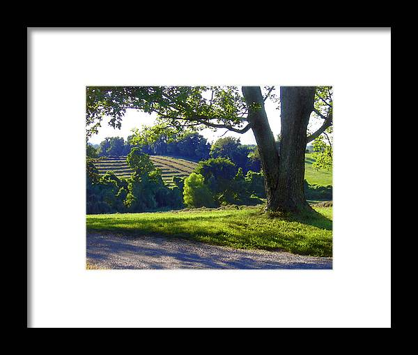 Landscape Framed Print featuring the photograph Country Landscape by Steve Karol