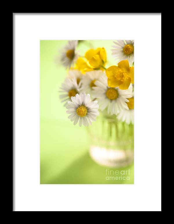 Flower Framed Print featuring the photograph Country Posy by Jan Bickerton