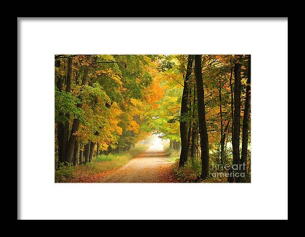 Autumn Framed Print featuring the photograph Country Road In Autumn by Terri Gostola
