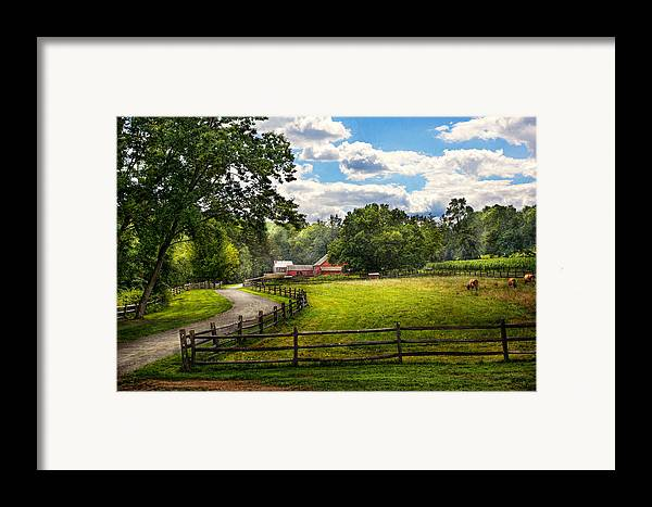 Cow Framed Print featuring the photograph Country - The Pasture by Mike Savad