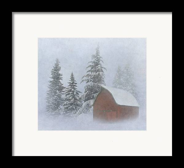 Winter Framed Print featuring the photograph Country Winter by Angie Vogel