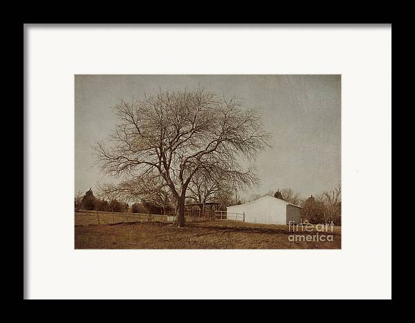 Countryside Framed Print featuring the photograph Countryside by Elena Nosyreva