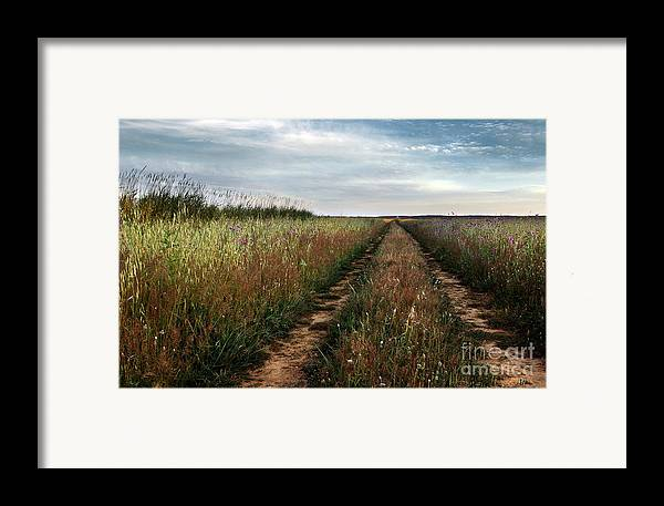 Adventure Framed Print featuring the photograph Countryside Tracks by Carlos Caetano
