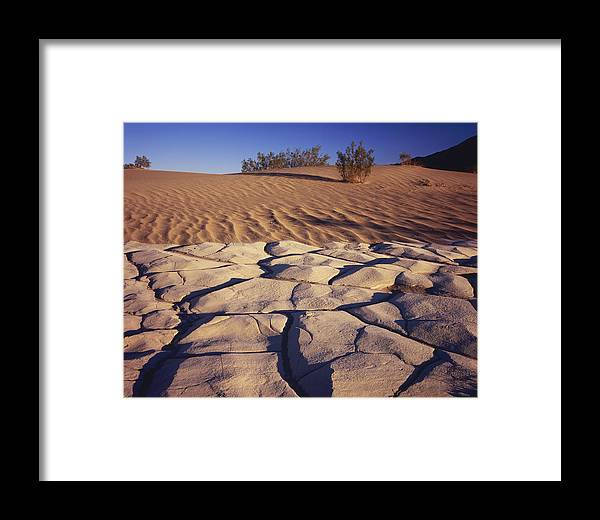 Nature Photography Framed Print featuring the photograph Cracked Mud - Sand Ripples by Tom Daniel