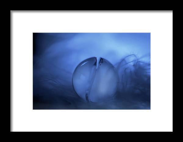 Macro Framed Print featuring the photograph Cracks by Heidi Westum