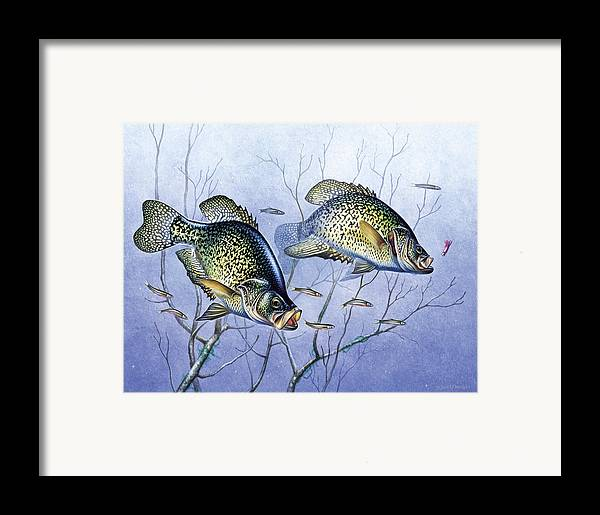 Jon Q Wright Framed Print featuring the painting Crappie Brush Pile by JQ Licensing