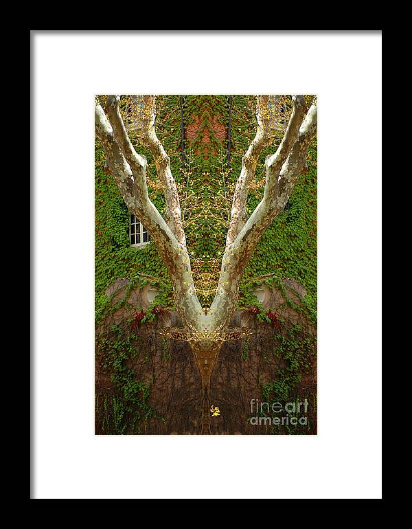 Framed Print featuring the photograph Creation 422 by Mike Nellums