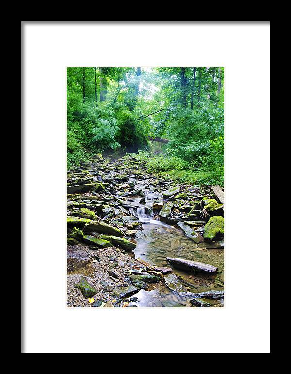 Cresheim Framed Print featuring the photograph Cresheim Creek by Bill Cannon