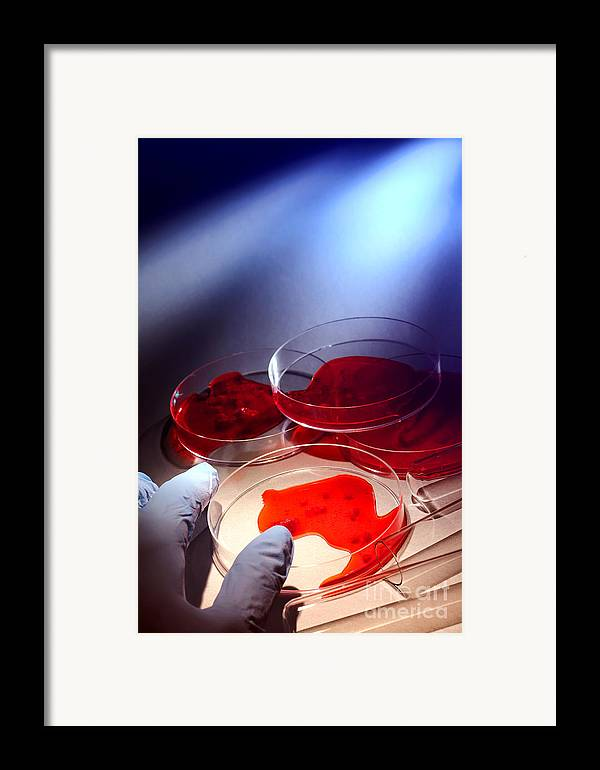 Csi Framed Print featuring the photograph Crime Lab by Olivier Le Queinec
