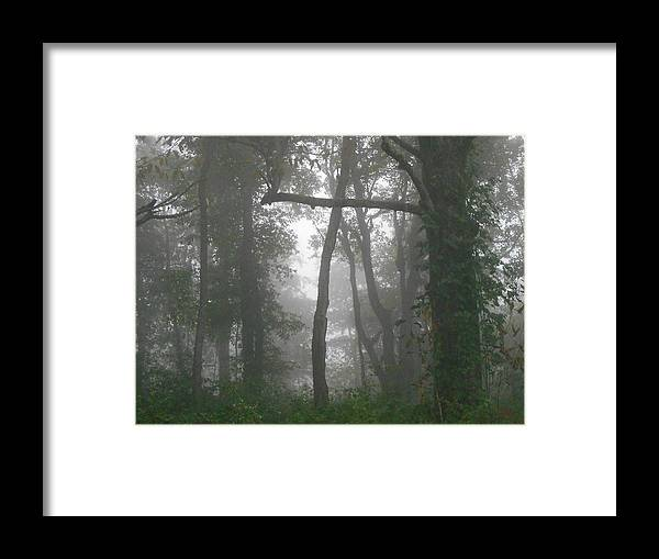 Cross Framed Print featuring the photograph Cross In The Woods by Diannah Lynch