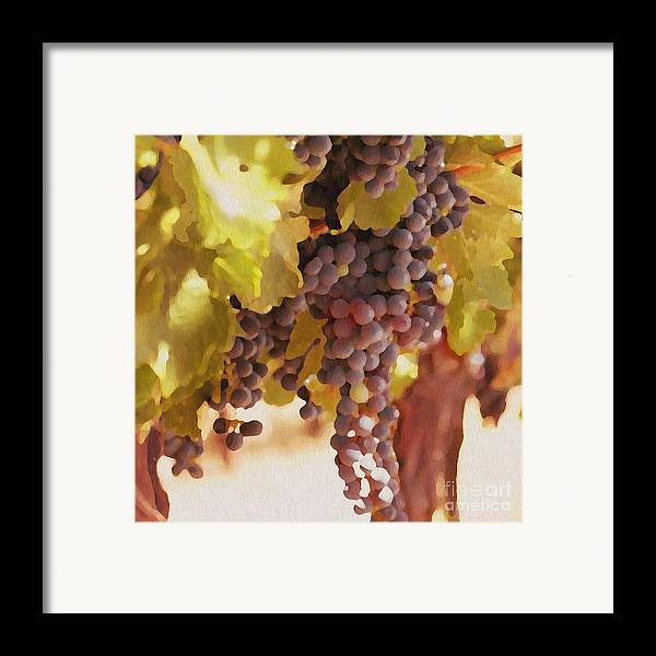 Grapes Framed Print featuring the drawing Crush Time by Artist and Photographer Laura Wrede