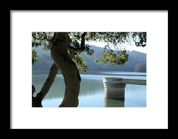 Crystal Springs Framed Print featuring the photograph Crystal Springs 2 by Pico Soriano