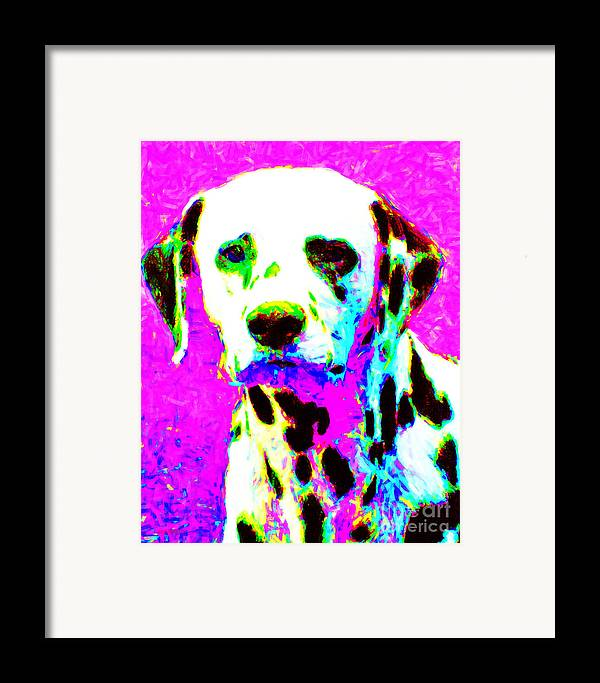 Animal Framed Print featuring the photograph Dalmation Dog 20130125v1 by Wingsdomain Art and Photography