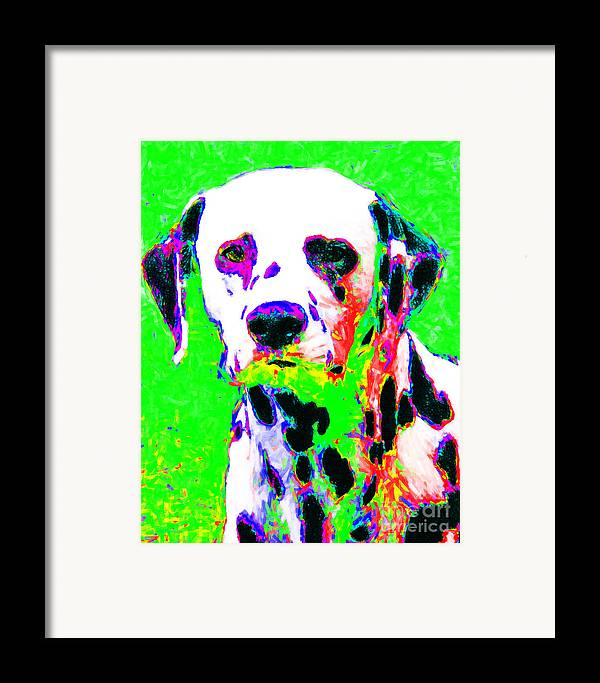 Animal Framed Print featuring the photograph Dalmation Dog 20130125v3 by Wingsdomain Art and Photography