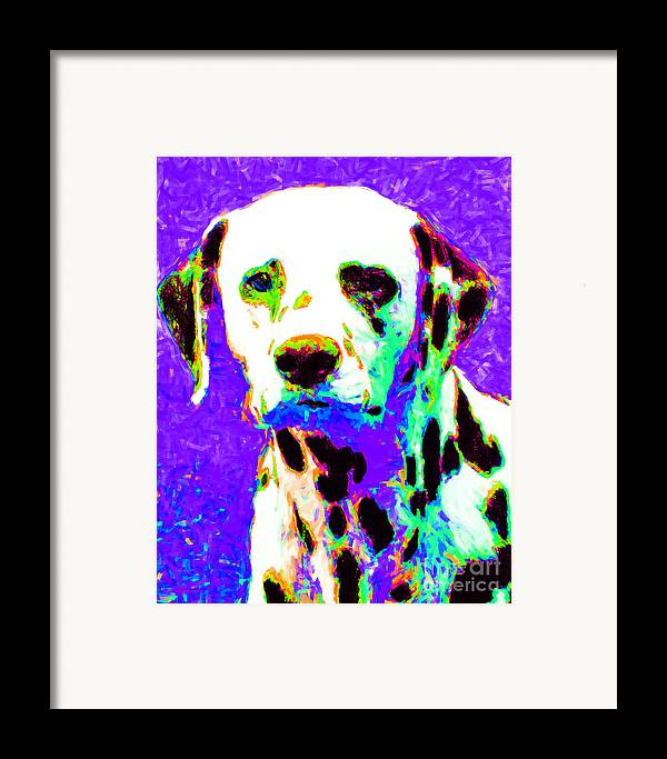 Animal Framed Print featuring the photograph Dalmation Dog 20130125v4 by Wingsdomain Art and Photography