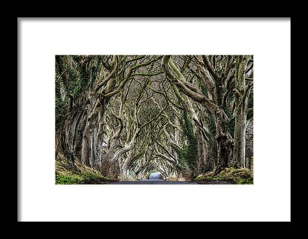 Dark Hedges Framed Print featuring the photograph Dark Hedges by Nigel R Bell