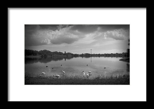 Black And White Framed Print featuring the photograph Darkness by Mayra Pau