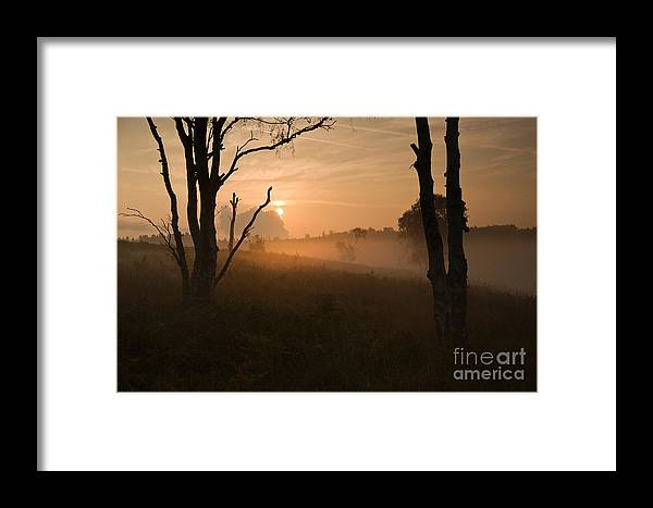 Sunrise Framed Print featuring the photograph Cannock Chase Dawn Mist by Ron Evans