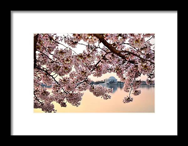 Washington Framed Print featuring the photograph Dc In Bloom IIi by Shahak Nagiel