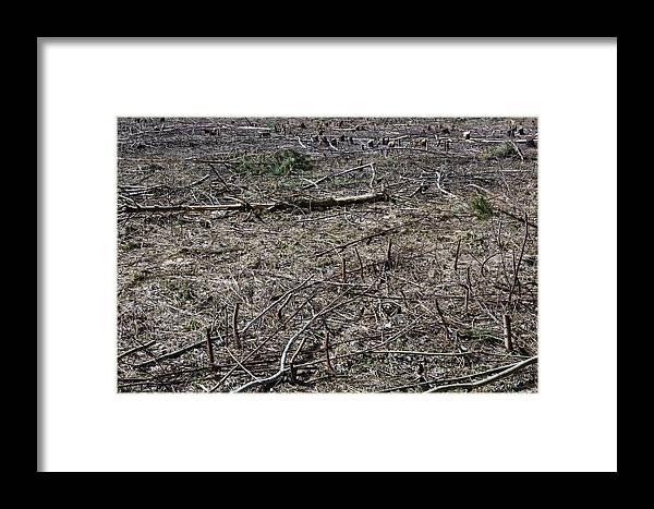 Dead Framed Print featuring the photograph Dead Earth by Aleksandr Volkov