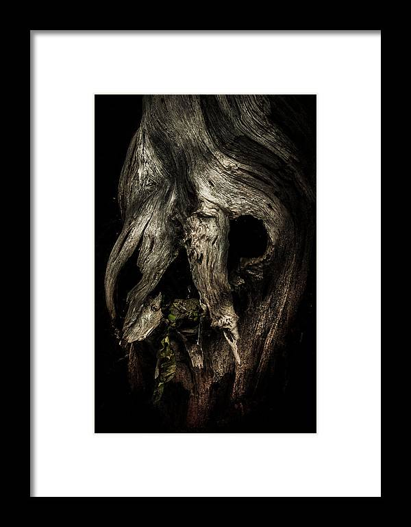 Wood Framed Print featuring the photograph Death Mask by Bill Zinck