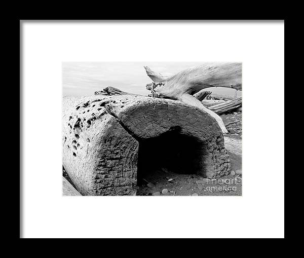 Olympic Peninsula Wa Framed Print featuring the photograph Deep Space Hollow - Bw - Wonderwood Collection - Olympic Peninsula Wa by Craig Dykstra