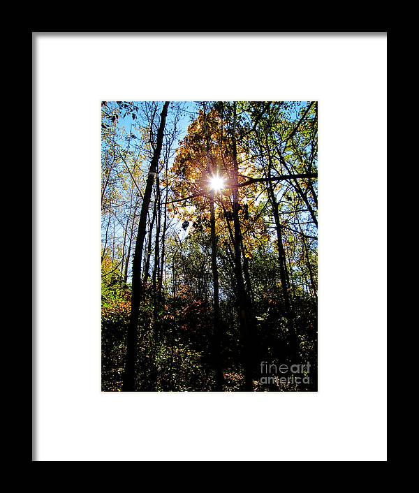 Delight Framed Print featuring the photograph Delight by Ron Tackett