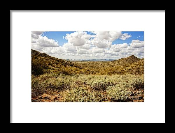 Southwest Framed Print featuring the photograph Desert Afternoon Delight by Lee Craig