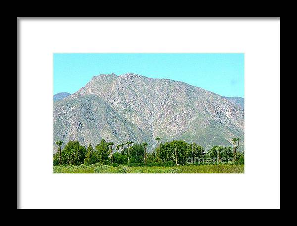 California Framed Print featuring the photograph Desert Oasis by Deborah Smolinske